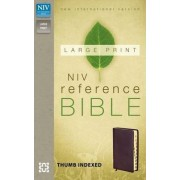 NIV, Reference Bible, Large Print, Imitation Leather, Blue/Green by Zondervan