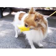 Museruola per cani a forma di becco di papera - Small