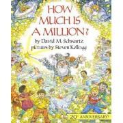 How Much Is a Million? by David M Schwartz