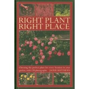Right Plant Right Place by Jackie Matthews
