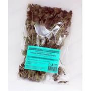 Котешка стъпка стрък (Clinopodium vulgare)