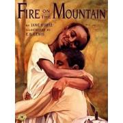 Fire on the Mountain by Kurtz