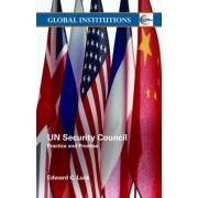UN Security Council by Edward C. Luck