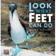 Look What Feet Can Do by D. Souza