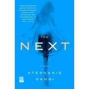 The Next: A Novel of Love, Revenge and a Ghost Who Can't Let Go