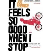 It Feels So Good When I Stop by Joe Pernice