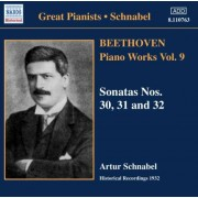 L Van Beethoven - Piano Works Vol.9 (0636943176320) (1 CD)