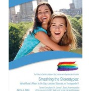 Smashing the Stereotypes: What Does it Mean to be Gay. Lesbian, Bisexual or Transexual by Jaime Seba