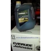 OLIO XD100 EVINRUDE E-TEC 3 x 1 gallone