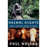 Animal Rights by Paul Waldau