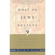 What Do Jews Believe by David S. Ariel