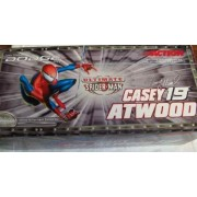 2001 Casey Atwood #19 Spider-man Dodge 1/24 Scale Nascar Collectable Diecast Car by Action Racing Collectables