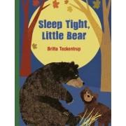 Sleep Tight, Little Bear by Britta Teckentrup