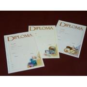 Diploma premiu