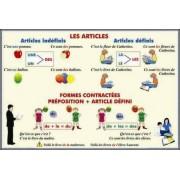 Les articles Formes contractees. Preposition + Article defini /Adjectifs et pronoms demonstratifs