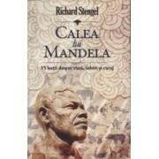 Calea lui Mandela - Richard Stengel