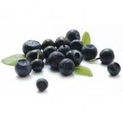 Fructe uscate de ACAI - pudrate cu mere, fara zahar