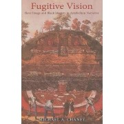 Fugitive Vision by Michael A. Chaney