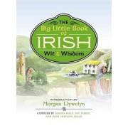 The Big Little Book of Irish Wit & Wisdom by Morgan Llywelyn