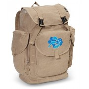 DOLPHIN LARGE Canvas Backpack Dolphins School or Travel Bag