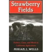 Strawberry Fields by Miriam J. Wells