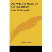 One Wife Too Many; Or Rip Van Bigham by Edward Hopper