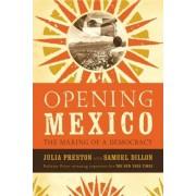 Opening Mexico by Julia Preston