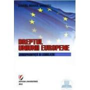 Dreptul Uniunii Europene. Jurisprudenta si legislatie ed.2 - Daniel Mihail Sandru