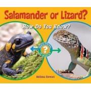 Salamander or Lizard? by Melissa Stewart