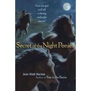 Secret of the Night Ponies by Joan Hiatt Harlow