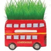 London Bus Grow - Kit - Cheatwell Games