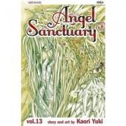 Angel Sanctuary by Kaori Yuki