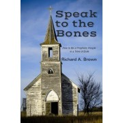 Speak to the Bones: How to Be a Prophetic People in a Time of Exile