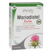 Physalis Mariadistel
