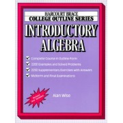 College Outline for Introductory Algebra by Wise