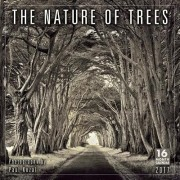 Cal 2017-Nature of Trees, the Photography by Paul Kozal