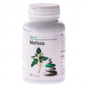 Melissa - Pentru asigurarea stării de bine şi a relaxării organismului