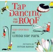 Tap Dancing on the Roof by Istvan Banyai
