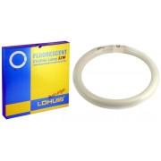 Lohuis lampa fluorescenta circulara tip cl32w