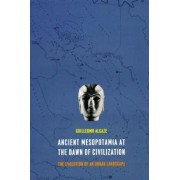 Ancient Mesopotamia at the Dawn of Civilization by Guillermo Algaze