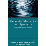 Geometric Mechanics and Symmetry by Darryl D. Holm