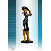 DC Comics Toy - Donna Troy 5 Inch Ame-Comi Mujer Colección Figura De Acción - Wonder Girl