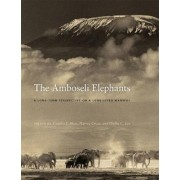 The Amboseli Elephants by Cynthia Moss