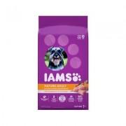 Iams ProActive Health Mature Adult Dry Dog Food, 7-lb bag