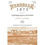 Nebraska 1875 by Edwin A. Curley