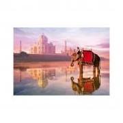 Educa Elefánt a Taj Mahalnál puzzle, 1000 darabos