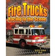 Fire Trucks by Molly Aloian