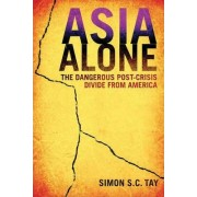 Asia Alone by Simon S. C. Tay