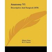 Anatomy V1 by Henry Gray