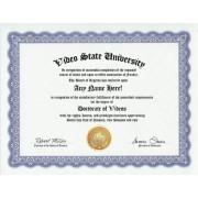 Video Videos Degree: Custom Gag Diploma Doctorate Certificate (Funny Customized Joke Gift Novelty Item)